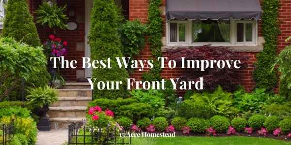 improve your front yard