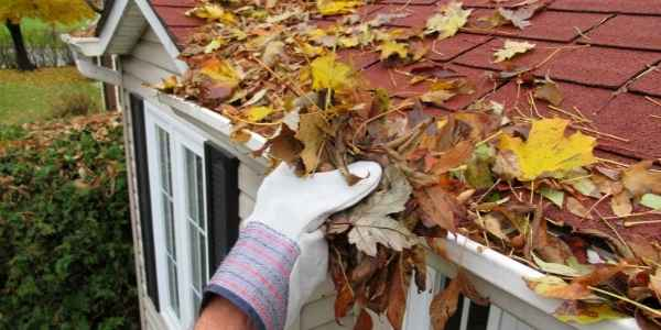 Profesional gutter cleaning service