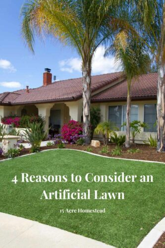 Aside from pure aesthetics, there are plenty of other good reasons to go artificial. Find out why here.