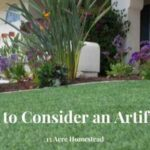 Artificial lawn featured image