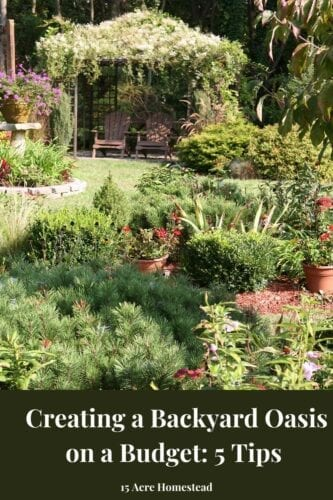 Use these 5 tips to create a backyard oasis in your yard that will be the envy of everyone.