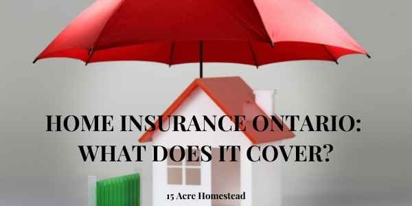 Home Insurance feature image
