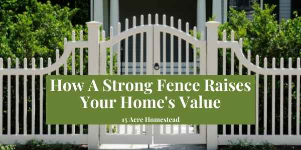 strong fence featured image