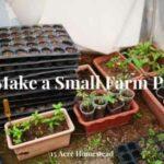 make a small farm profitable featured image