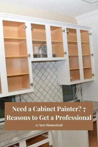 While most homeowners consider paint jobs something to DIY, the result may not always turn out as intended. Hire a professional cabinet painter and see what amazing results you will find!