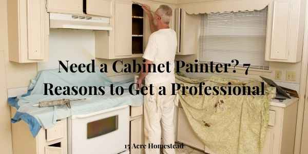 cabinet painter featured image