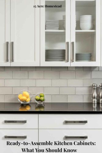 RTA kitchen cabinets are growing more popular every day as more homeowners prefer these simple and cost-friendly cabinet options to their pre-installed alternatives. There are many benefits to assembling and installing these cabinets in your kitchen.