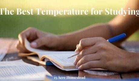 best temperature for studying