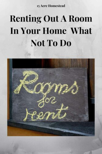 There are many different options when it comes to renting out a room you have available, however, there is little denying that Internet listings are the most effective in the modern-day and age.