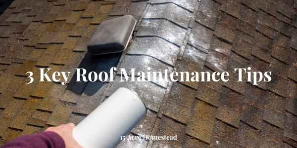 roof maintenance tips featured image