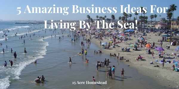business ideas featured image
