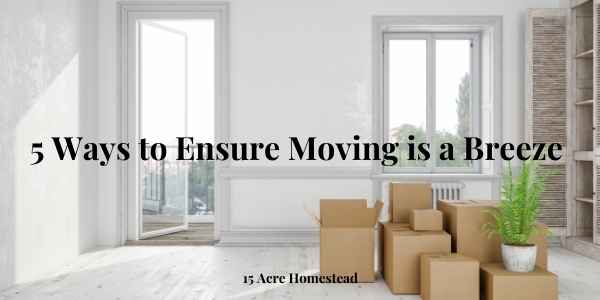 ensure moving is a breeze featured image