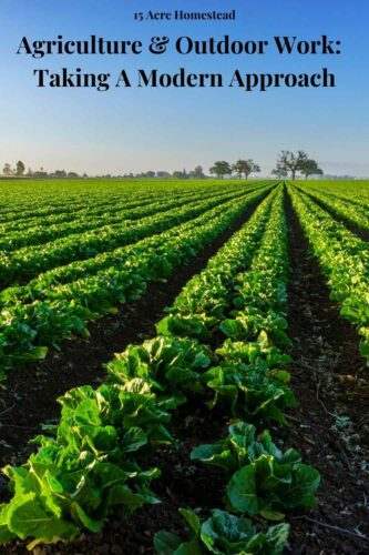 Agriculture is by far the oldest form of largescale business. Many people consider the beginning of civilization to have come with humans learning to farm. This activity has carried on into the modern world.
