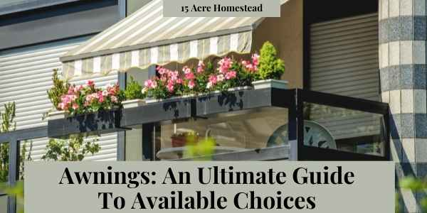 awnings featured image