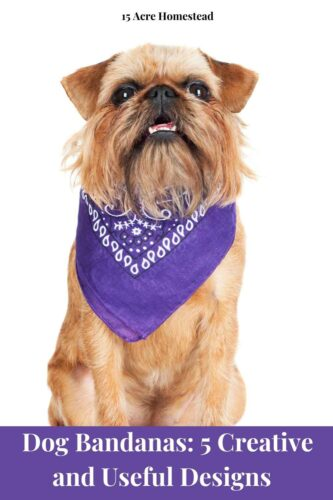 Custom dog bandanas are a great way for pet parents to brighten up their pup's wardrobe. Beyond making fur babies look nice and presentable, dog bandanas come in lots of creative designs that serve various functional purposes.
