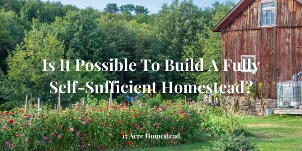 self-sufficient homestead featured image