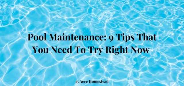 pool maintenance featured image