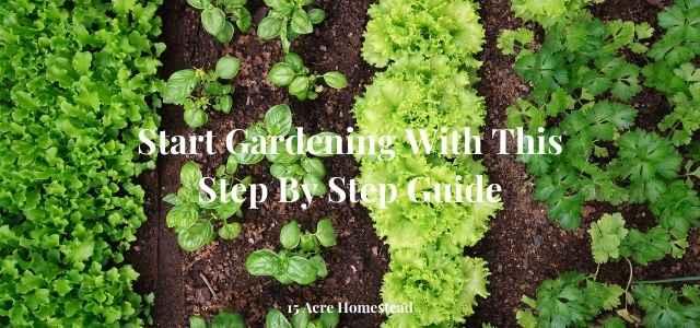 start gardening featured image