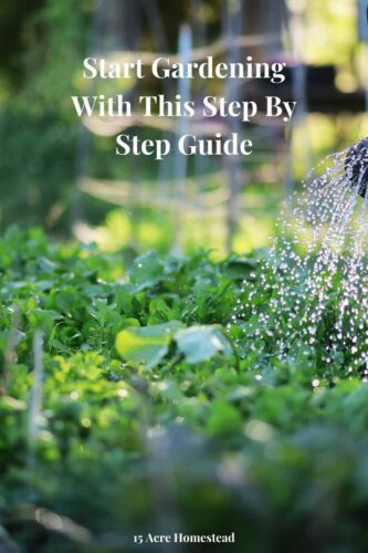 If you are looking to finally start gardening then the step-by-step instructions here will get you started today.