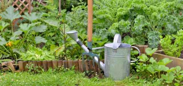 Garden with watering can