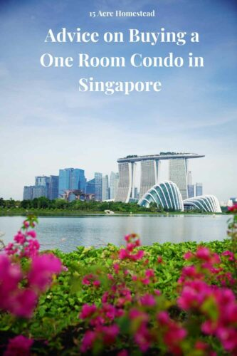A particular oneroom condo Singapore that fits perfectly for one buyer may not suit the other home seeker. Why? No two persons have the same-sized family.