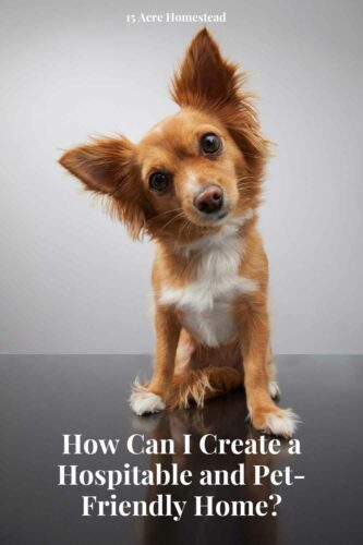 :Learn how to have a pet-friendly home no matter what type of pet you have.
