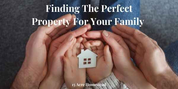 Finding the perfect property featured image