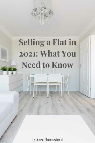 If you're selling a flat in 2021 then you need to read the information in this post before you take the leap so you can get the best price.