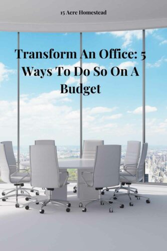 Here are some great options to transform an office on a budget that will benefit your employees and your budget.