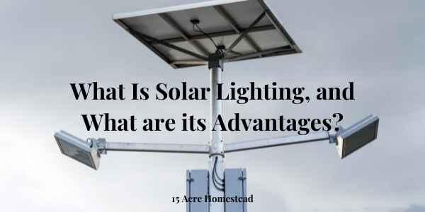 Solar lighting feautred image