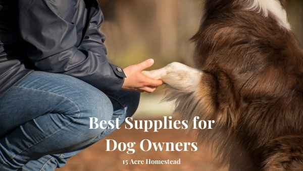 best supplies for dog owners featured image