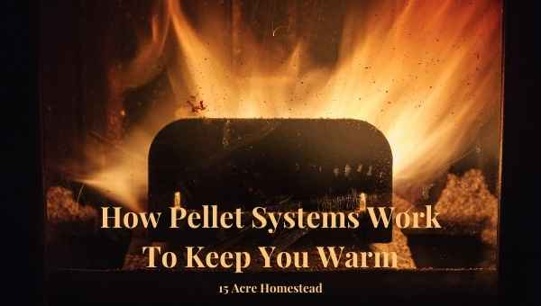 pellet systems featured image