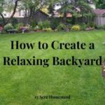 create a relaxing backyard featured image