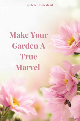 There are a few things you can do to turn your garden into a true marvel. You should find that your garden can look truly beautiful and stunning in no time if you follow these ideas.