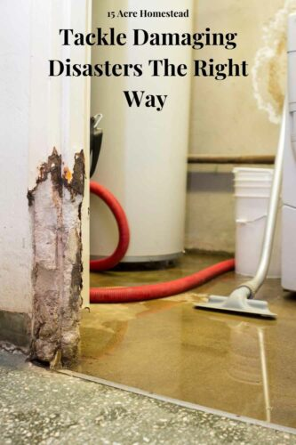As a homeowner, dealing with damage to your property is almost a fact of life. You just need to make sure that you understand how to tackle damaging disasters in the right way. Here are the suggestions we recommend.