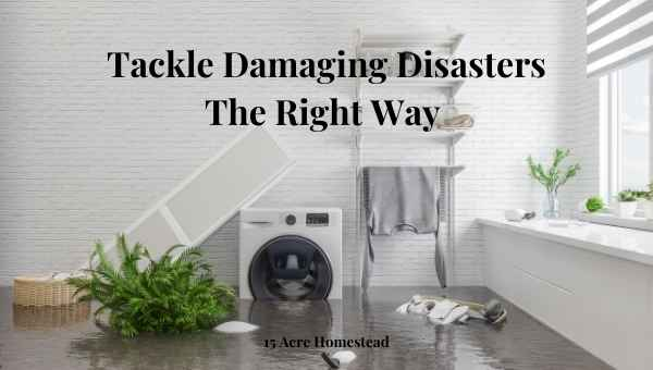 tackle damaging disasters featured image
