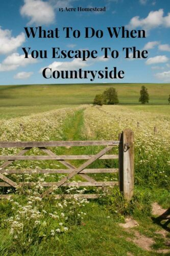 Here is a quick guide about what to do when you escape to the countryside.